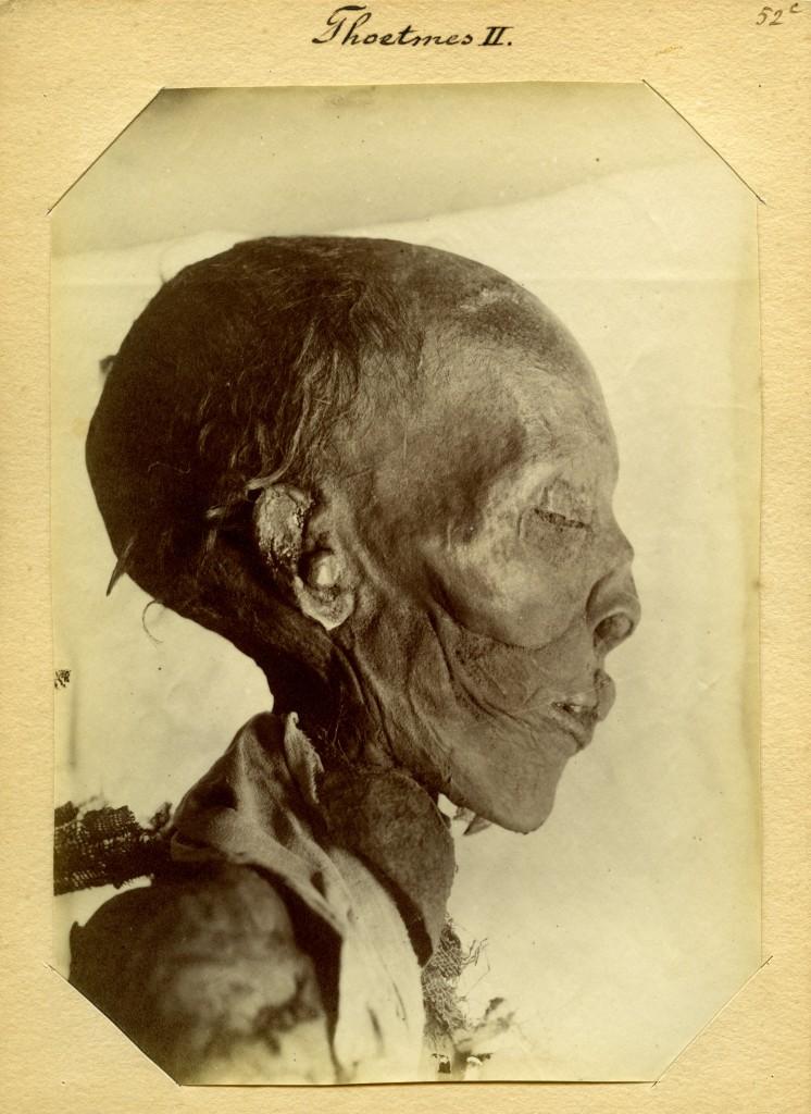 Jan Herman Insinger (1854-1918), Gemummificeerd lichaam van de farao Thoetmosis II (18e dynastie), 1886, Rijksmuseum van Oudheden, Leiden