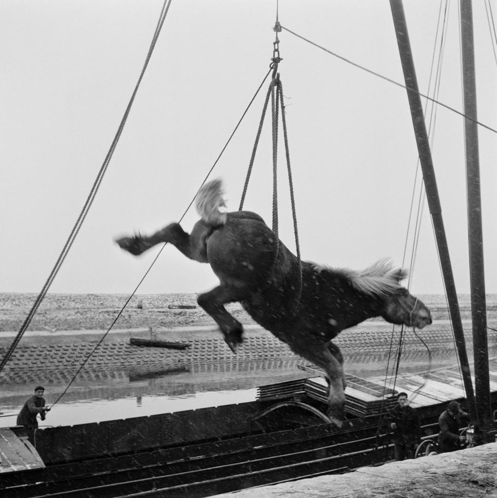 Watersnood, Zierikzee (1953), copyright Martien Coppens/Nederlands Fotomuseum