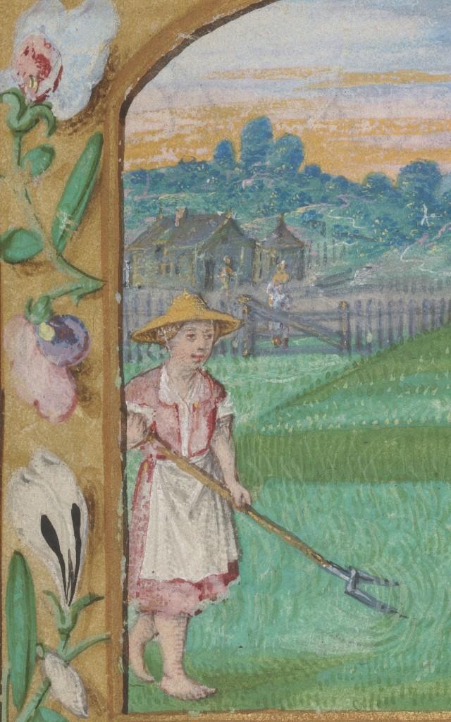 Kalender met de maand juni (detail), in: Getijdenboek, Meester van Morgan, M. 491, Brabant, ca. 1530, Koninklijke Bibliotheek Den Haag, foto Beeldstudio KB