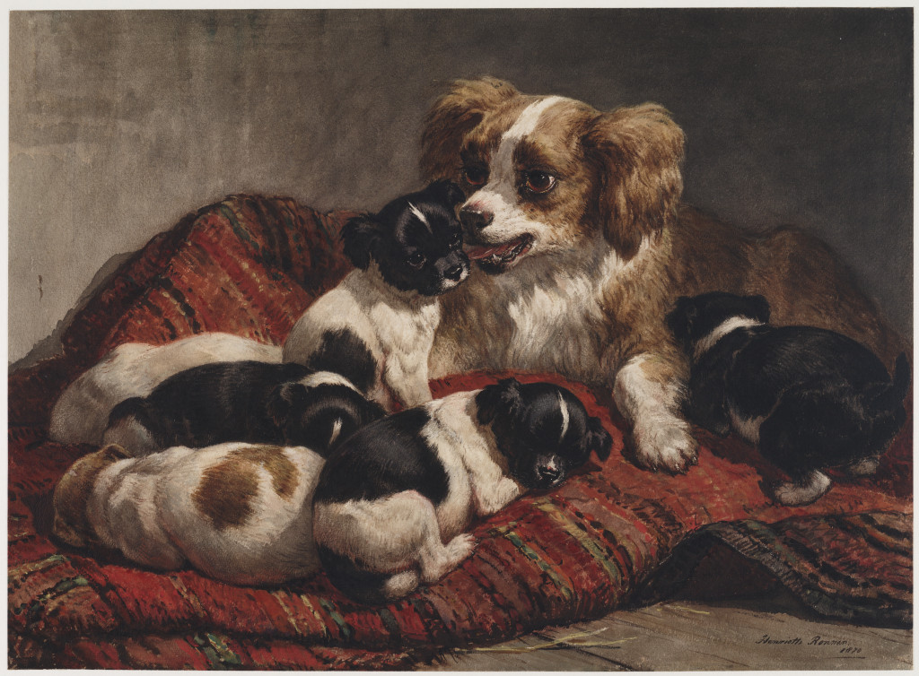 Henriette Ronner-Knip (1744-1831), De wasbeurt, 1870, aquarel, 45,8 x 62,8 c,, Teylers Museum, Haarlem
