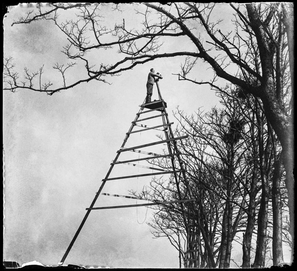 'Vogelfotografie van de bovenste plank', Sloten 1933, copyright Jan Pieter Strijbos, Nederlands Fotomuseum